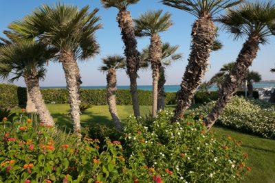 Hotel Gallipoli sul mare 2